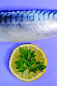 mackerell